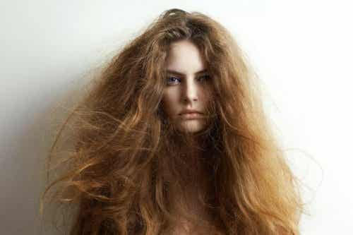 5 Natural Ingredients for Treating Dry Hair