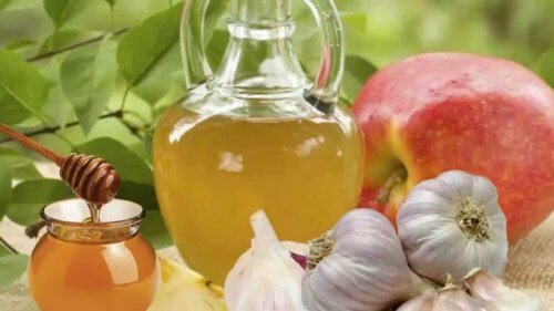 The Countless Benefits of Garlic and Honey