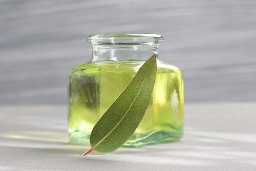 A small bottle of eucalyptus oil.