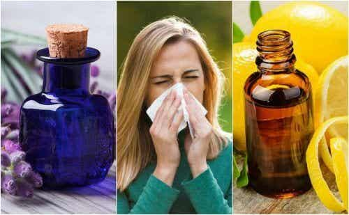6 Essential Oils for Allergies