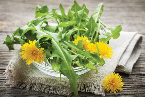 Dandelion to help lower blood pressure