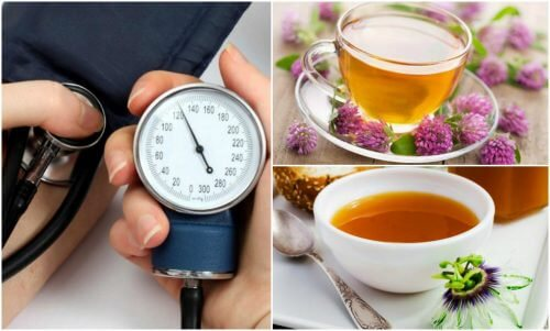 The 6 Best Herbs for Lowering Blood Pressure