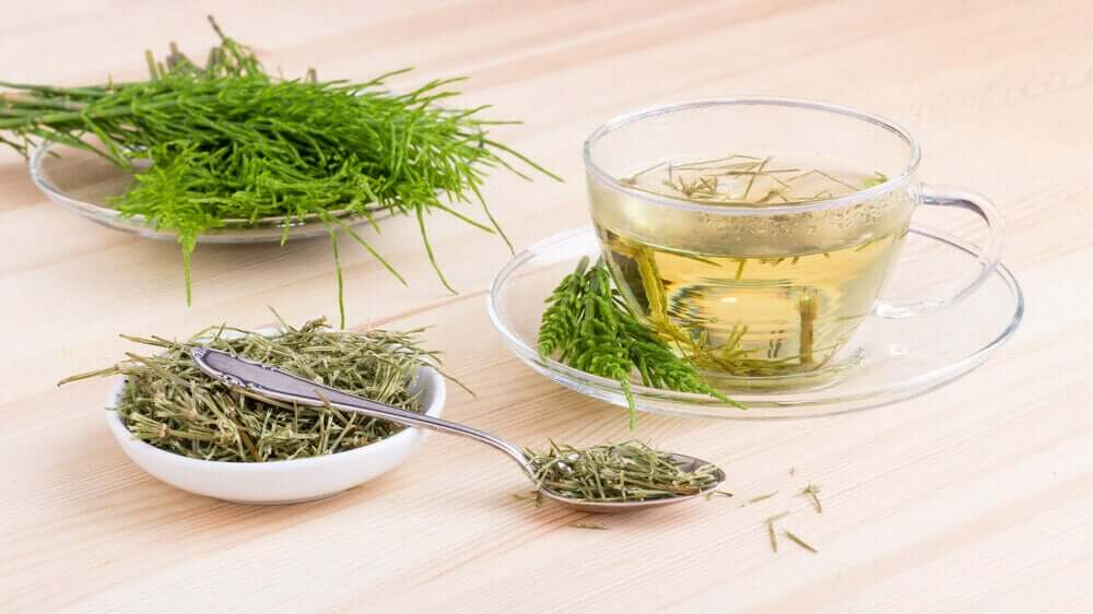 A cup of horsetail infusion to help relieve mouth ulcers.