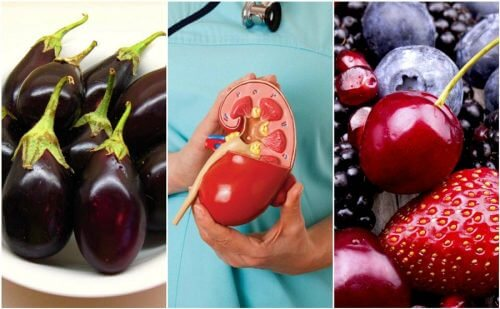 Improve Your Kidney Health with These 8 Foods