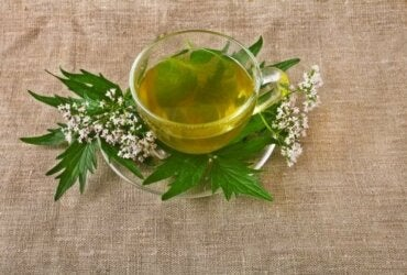 5 Medicinal Herbs for Treating Depression