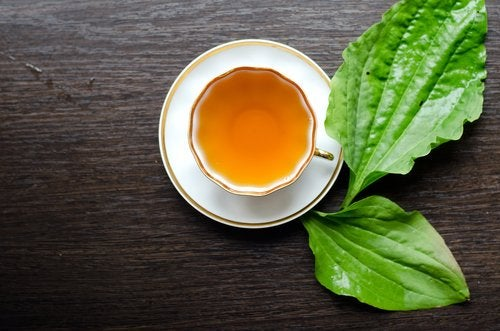 Fat-burning teas like mint can really help metabolism.
