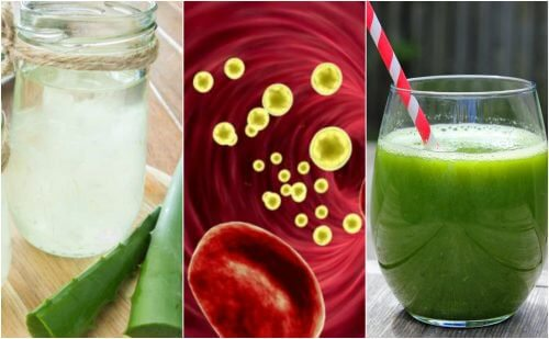 Cleanse Your Bloodstream with 5 Medicinal Beverages