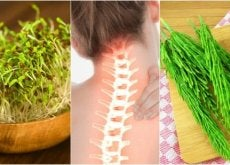 Plants for healthy bones