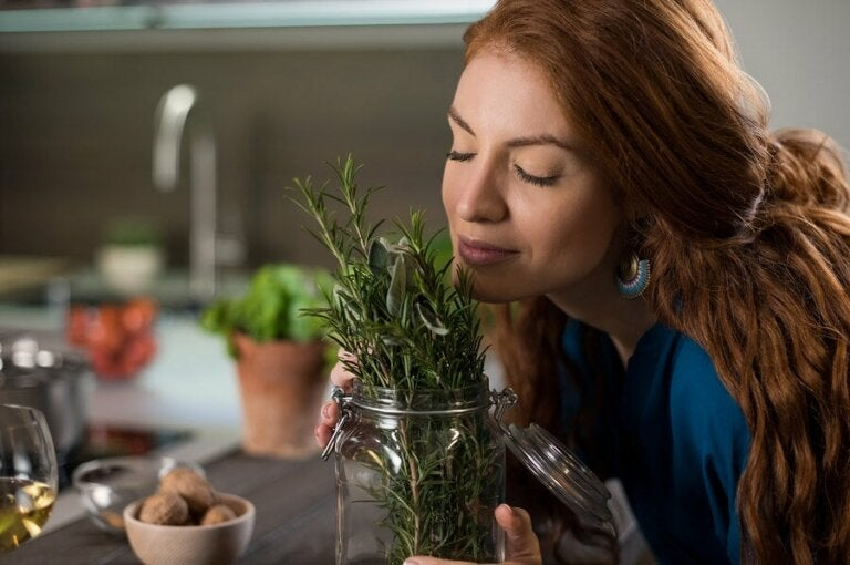 Six Herbs and Spices that Promote Hair Growth