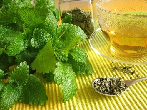 Lemon balm tea you can drink if you have irritable bowel syndrome