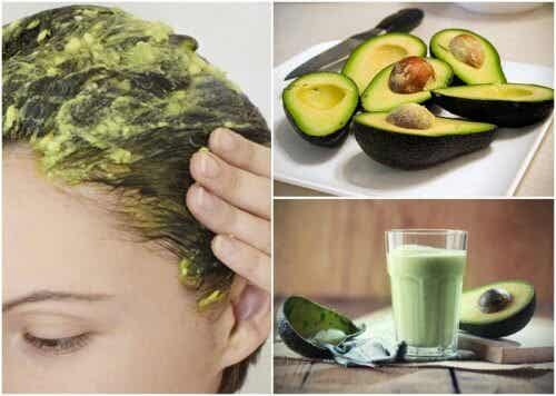 6 Amazing Natural Remedies with Avocado