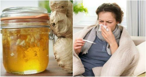 Homemade Honey and Ginger Syrup to Fight Colds