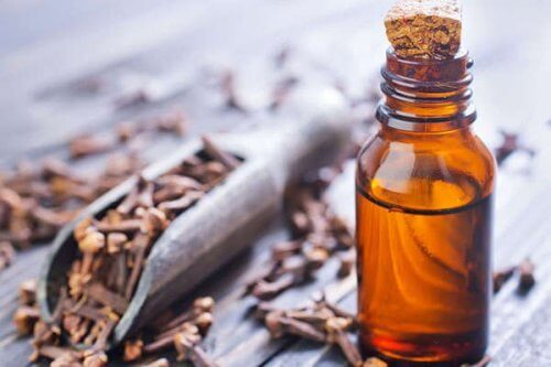 Sweet clove oil