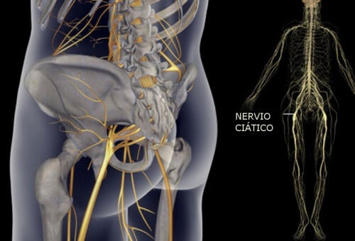 Simple Exercises to Heal Sciatic Nerve Pain