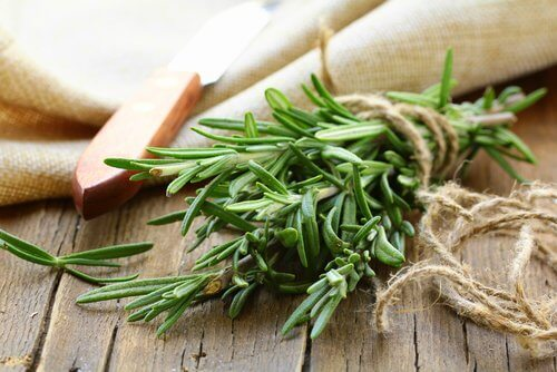 rosemary sprig, one of the herbs and spices to promote hair growth