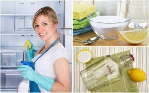 5 Homemade Solutions to Clean and Disinfect Your Refrigerator