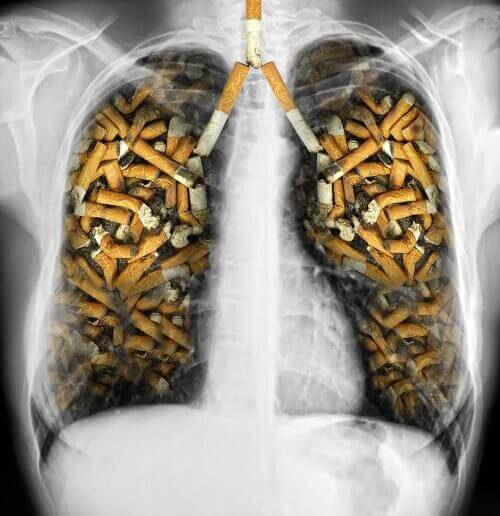 Dangerous myths about tobacoo that affect lungs