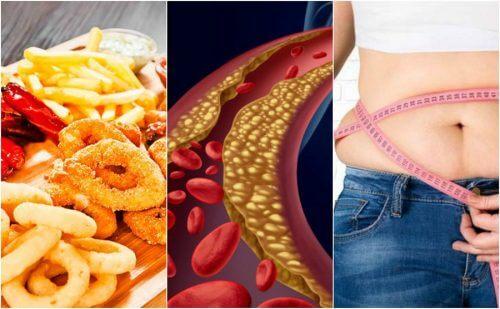 6 fattori che possono causare il colesterolo alto