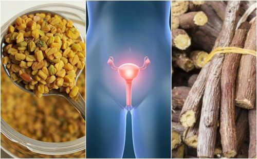 5 Natural Remedies that Help You to Cope with Polycystic Ovarian Disease
