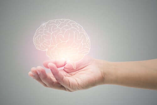 Five Simple Habits to Help Regenerate Neurons