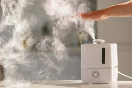 A working humidifier.