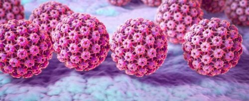 An image of the HPV virus.