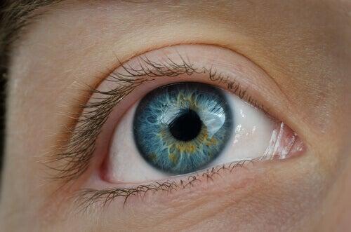 Protects visual health