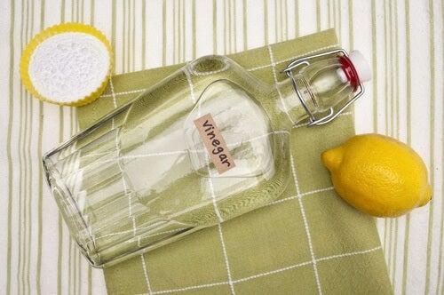 white vinegar and lemon for an eco-friendly glass cleaner