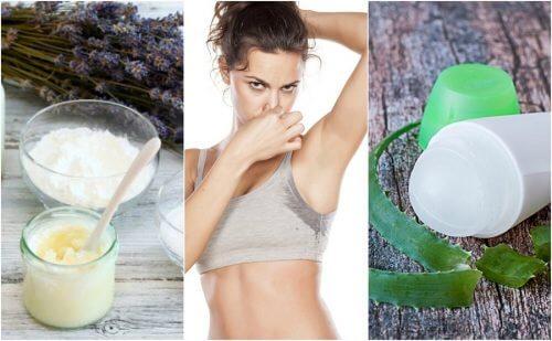 5 Natural Deodorants to Eliminate Bad Armpit Odor