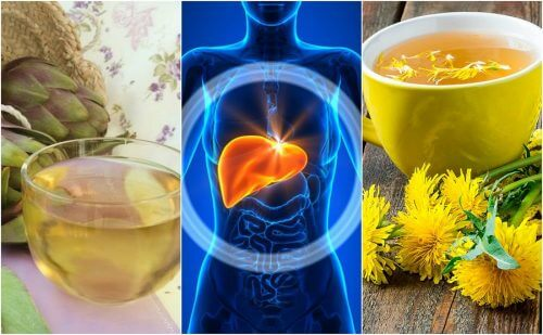 Fight Fatty Liver Naturally with 5 Herbal Remedies