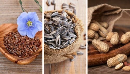 5 Edible Seeds and Their Incredible Properties