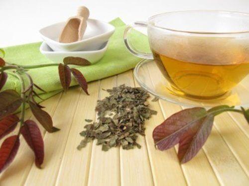 walnut bark tea to reduce dental plaque