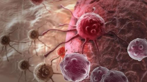 According to a New Study, THIS Could be the Main Cause of Cancer