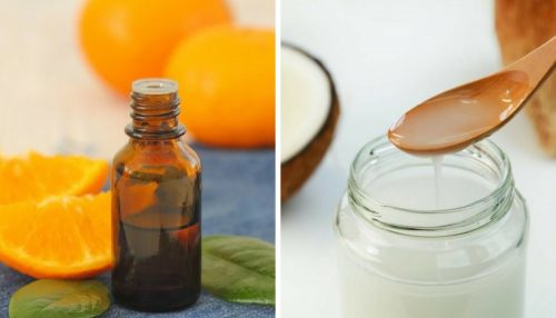 Coconut Citrus Oil for Nourished, Soft, and Clear Skin