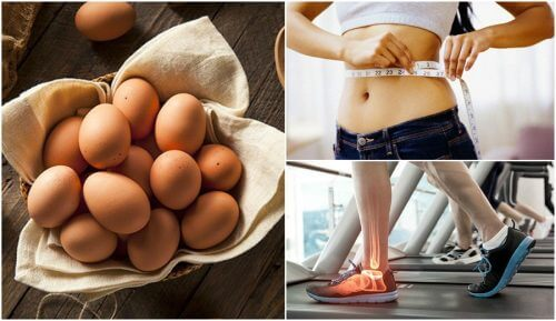 7 Reasons It's a Good Idea to Add Eggs to Your Diet