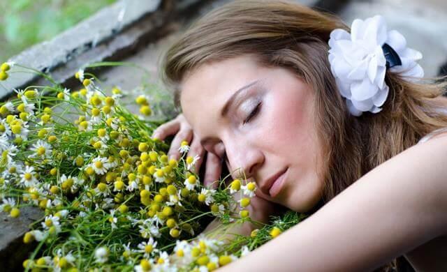 Plants reduce noise levels