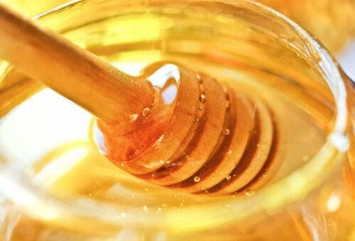 honey pot and stirrer close up