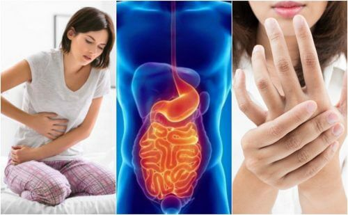 Leaky Gut Syndrome: 8 Symptoms You Shouldn't Ignore