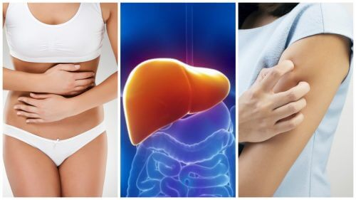 Eight Symptoms of a Liver Overloaded with Toxins