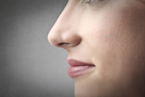 woman's nose