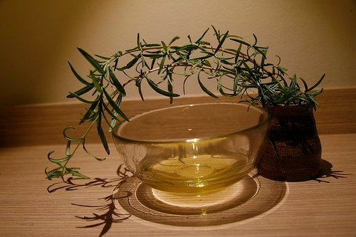 Essential tea tree oil