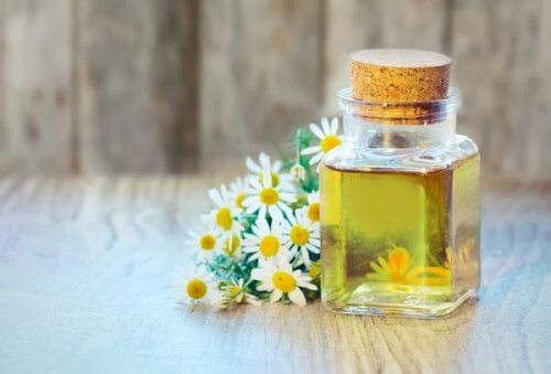 Essential Camomile oil