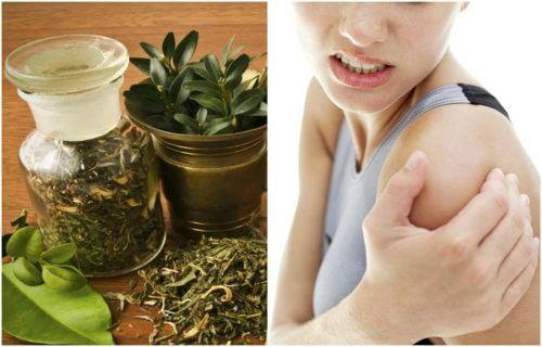 Relieve Painful Joints with an Herbal Alcohol Ointment