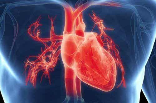Did You Know That Excessive Work Can Affect Your Heart?