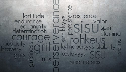 Sisu, a strategy for difficult times