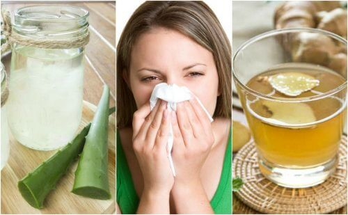 5 Natural Remedies for Allergic Rhinitis