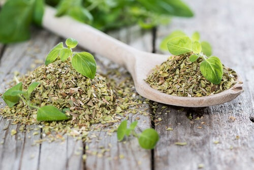 Cleanse your digestive system with oregano