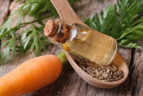 3 Carrot Oil Treatments for Strong, Healthy Hair