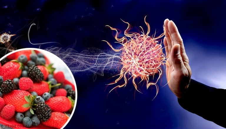9 Foods That Strengthen Your Immune System