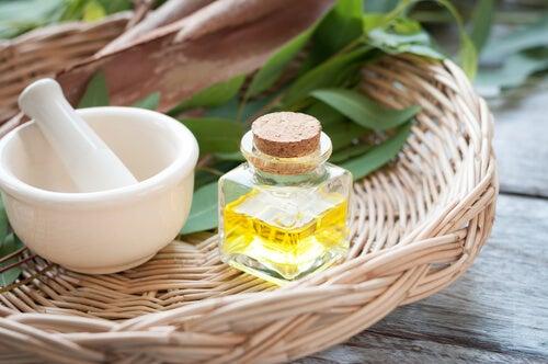 Eucaliptus oil.